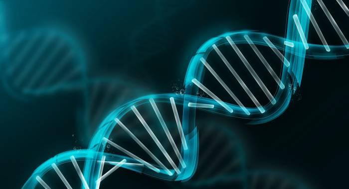 Генетический тест в четырех разных компаниях: личный опыт финского биохакера