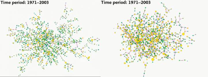 Как изменилось количество людей с ожирением в одной социальной сети за 32 года исследований. Зеленые круги — люди с нормальным весом, желтые — с ожирением