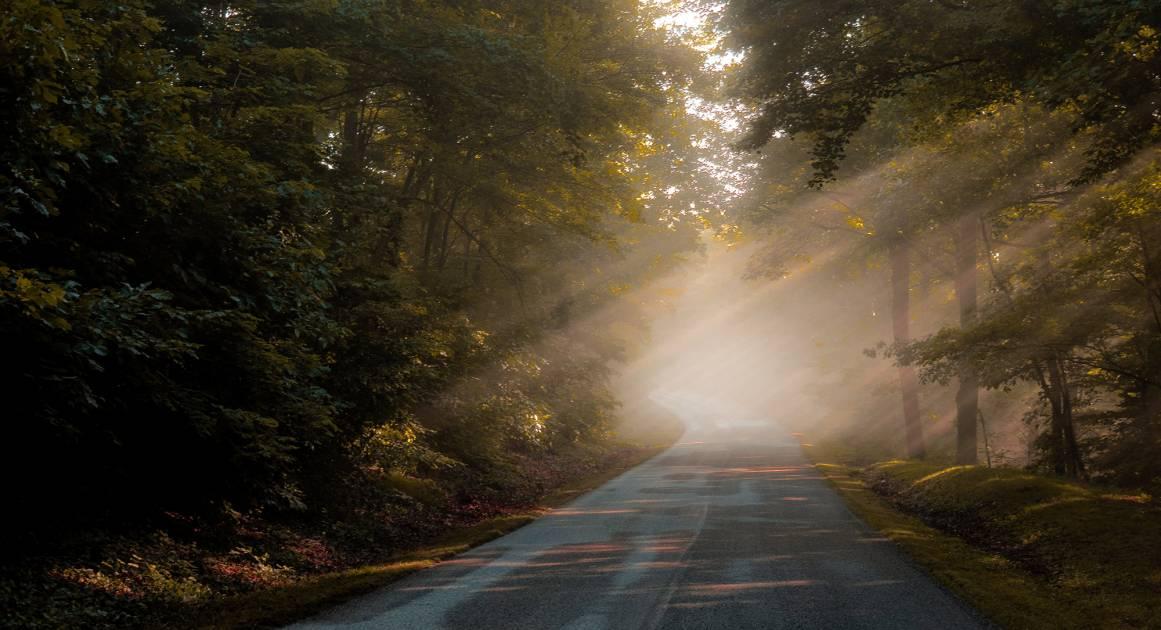 Подробный гид по смыслу жизни: как его найти и зачем он нужен