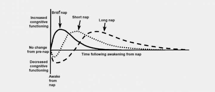 Влияние дневного сна на когнитивные функции. График из исследования Университета Флиндерса