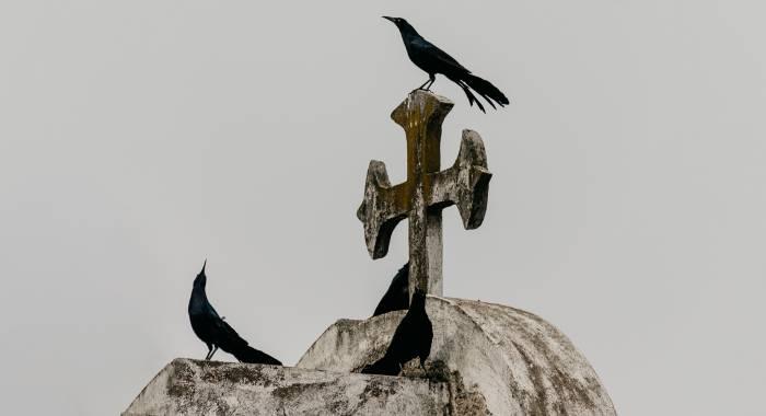 Уйти красиво: почему о своей смерти необходимо говорить при жизни