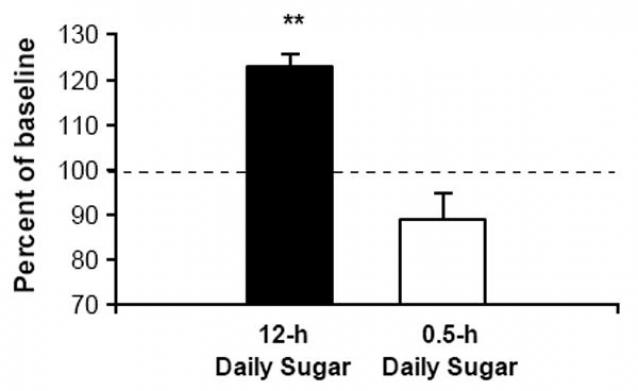 Как часто после двухнедельного воздержания нажимали на рычаг для получения дозы сахара мыши, у которых до этого был к нему доступ в течение 12 часов в день (черный столбик) и в течение 30 минут в день (белый столбик)