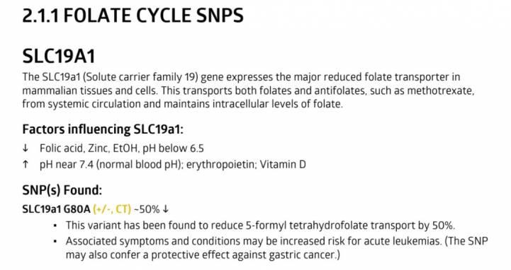 Так выглядит информация о функциях конкретного гена на примере SLC19А1.