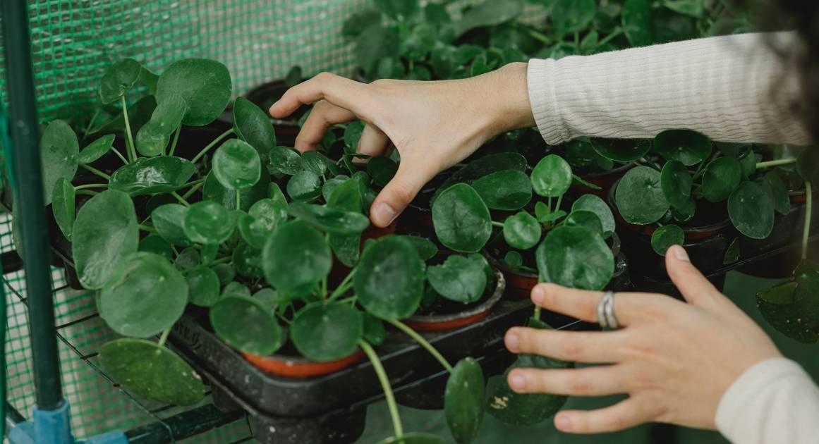 10 экспериментов на майские праздники, которые помогут почувствовать себя лучше